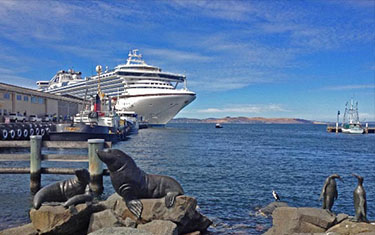 Cruise Ship at Hobart